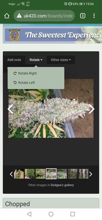 Screenshot_20210523_150417_com.android.chrome.jpg