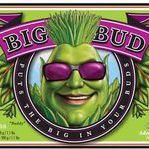 bigbud78