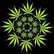 Hippie on hill