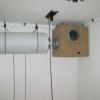 Gekko And carbon filter hung Up