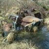 rotting cars