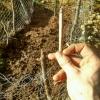 joint break