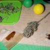 Cookies Kush Buds and Rosin