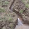 Plot 3's drainage ditch