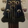 PRS P22 Tremelo - Makena Blue - 10 Top