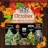attitude-seedbank-october-promotion-social.jpg