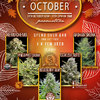 choice-seedbank-october-promotion-social.jpg