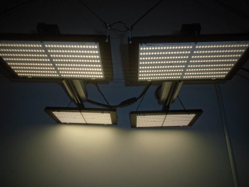 Quantum board lights being discontinued - DIY LED UK - UK420