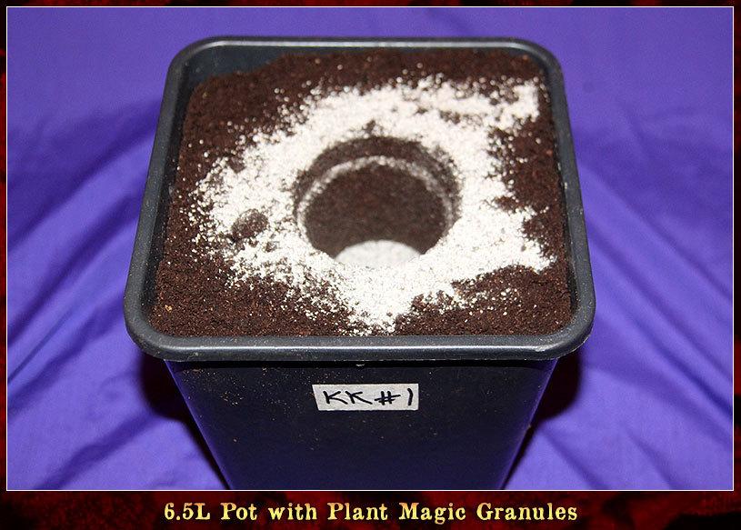 large.KK-Day-16-03.jpg