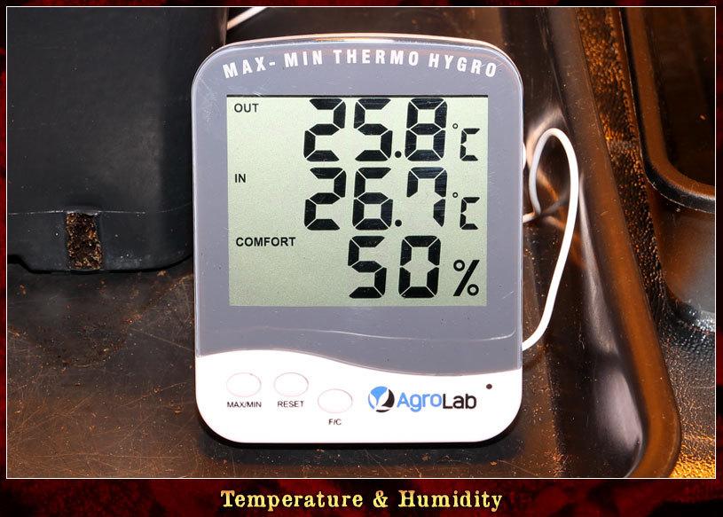 large.Temperature-01.jpg