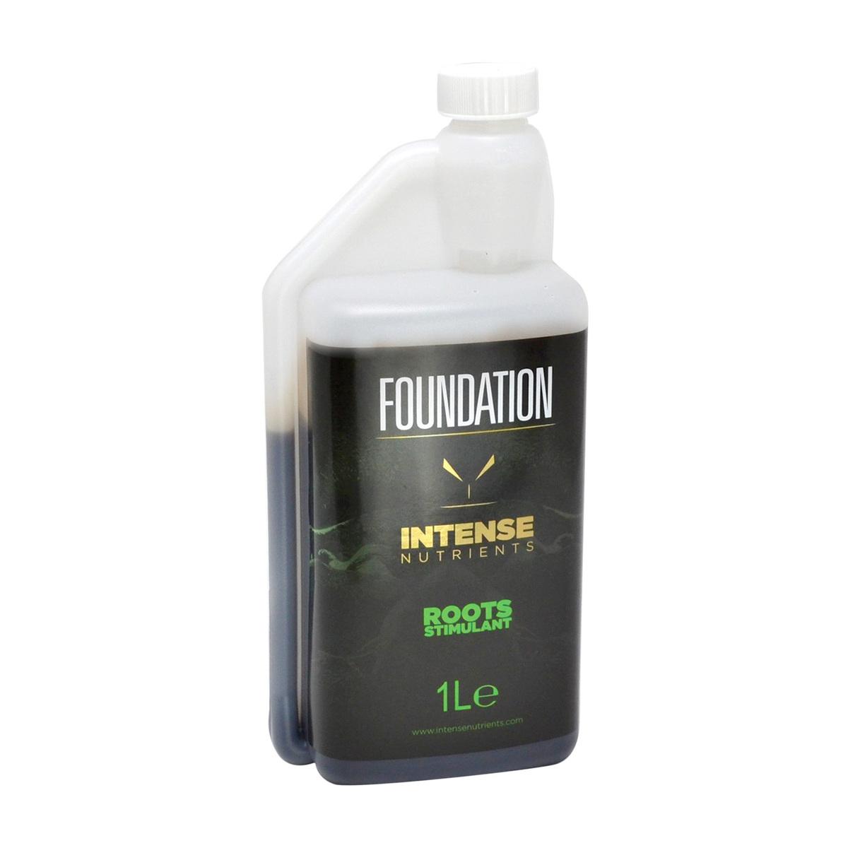 large.Foundation-1L-web.jpg
