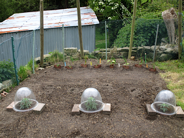large.Cloches.jpg