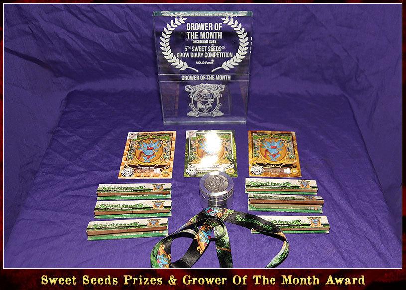 large.Sweet-Seeds-Prizes.jpg