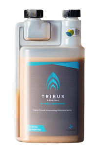 large.tribus_bottle-removebg-preview.png