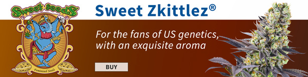 large.Zkittlez_600x150_ES.jpg.64319d66b3