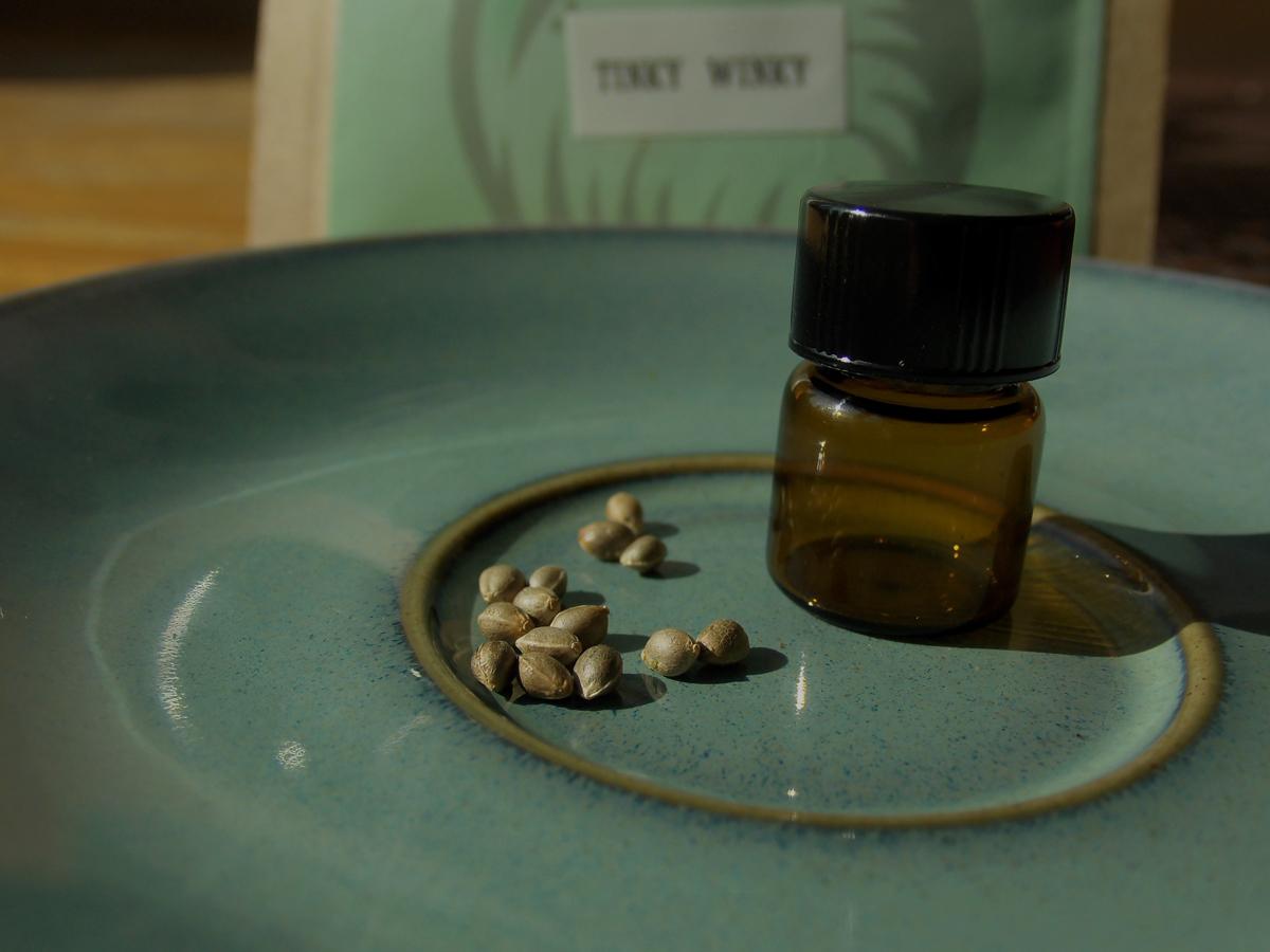 large.seeds-TW.jpg