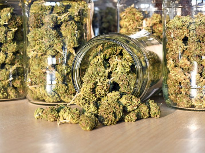 """""""I've been able to reassure people that medicinal cannabis has the non-psychoactive one, mainly CBD, which doesn't have the mental health, and medicine cannabis is rather different therefore from street cannabis,"""" Barnes told Newstalk ZB."""